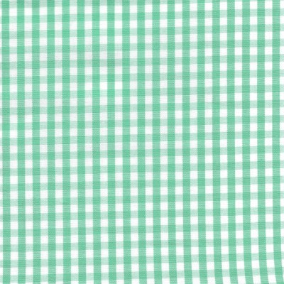 Mint and white small gingham